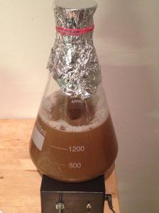 Flask over stirplate